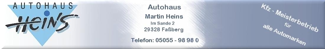 Autohaus Martin Heins